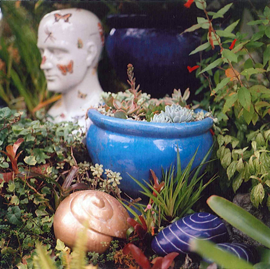 A blue planter and many plants surrounding it
